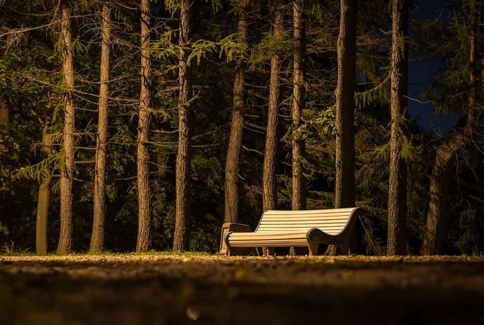 banc dans un parc