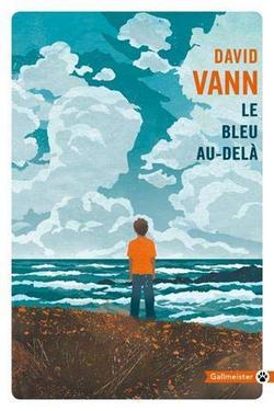 roman david Vann le bleu au dela